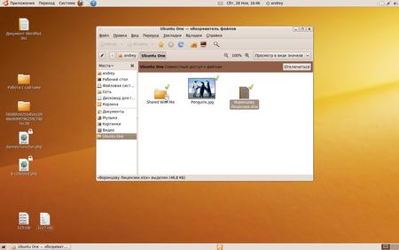 Ubuntu-9.10-2009-11-28-16-46-12.png
