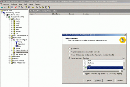 SQL2000_Server_Backup_4.png