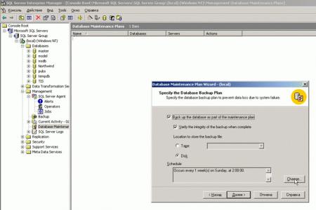SQL2000_Server_Backup_5.png