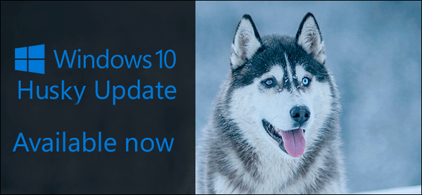 windows-10-updates-after-dogs-001.png