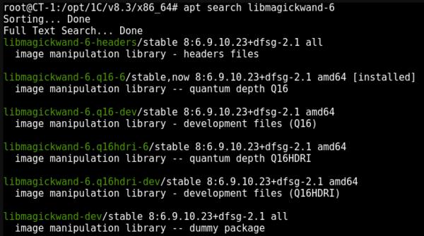 1cv83-web-access-linux-006.png