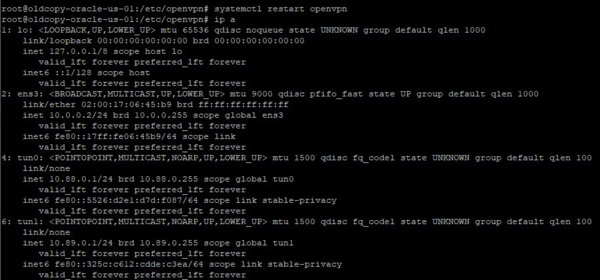 OpenVPN-2servers-002.png