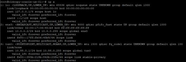OpenVPN-internet-gateway-002.png