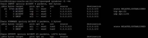 OpenVPN-internet-gateway-003.png