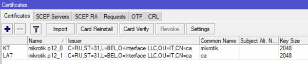 mikrotik-openvpn-server-019.png