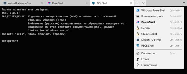windows-terminal-010.png