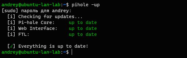 Pi-hole-018.png