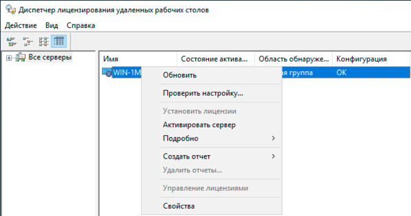 windows-server-terminal-workgroup-004.png