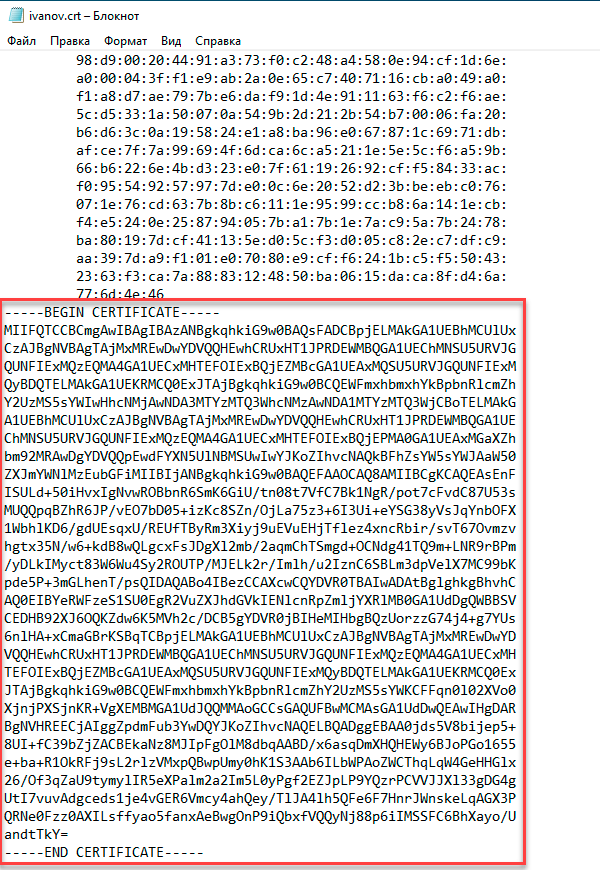 https://interface31.ru/tech_it/images/embedding-certificates-in-ovpn-001.png