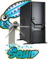 squid-auth-000.png