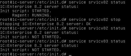 ubuntu-1cv82-1cv83-001.jpg